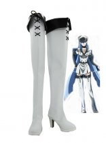 Akame ga Kill! General Esdeath White Cosplay Boots