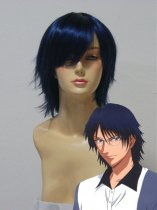 The Prince of Tennis Yushi Oshitari Cosplay Wig