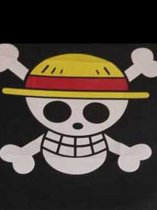 One Piece Cosplay Jolly Rogers Cosplay Flag